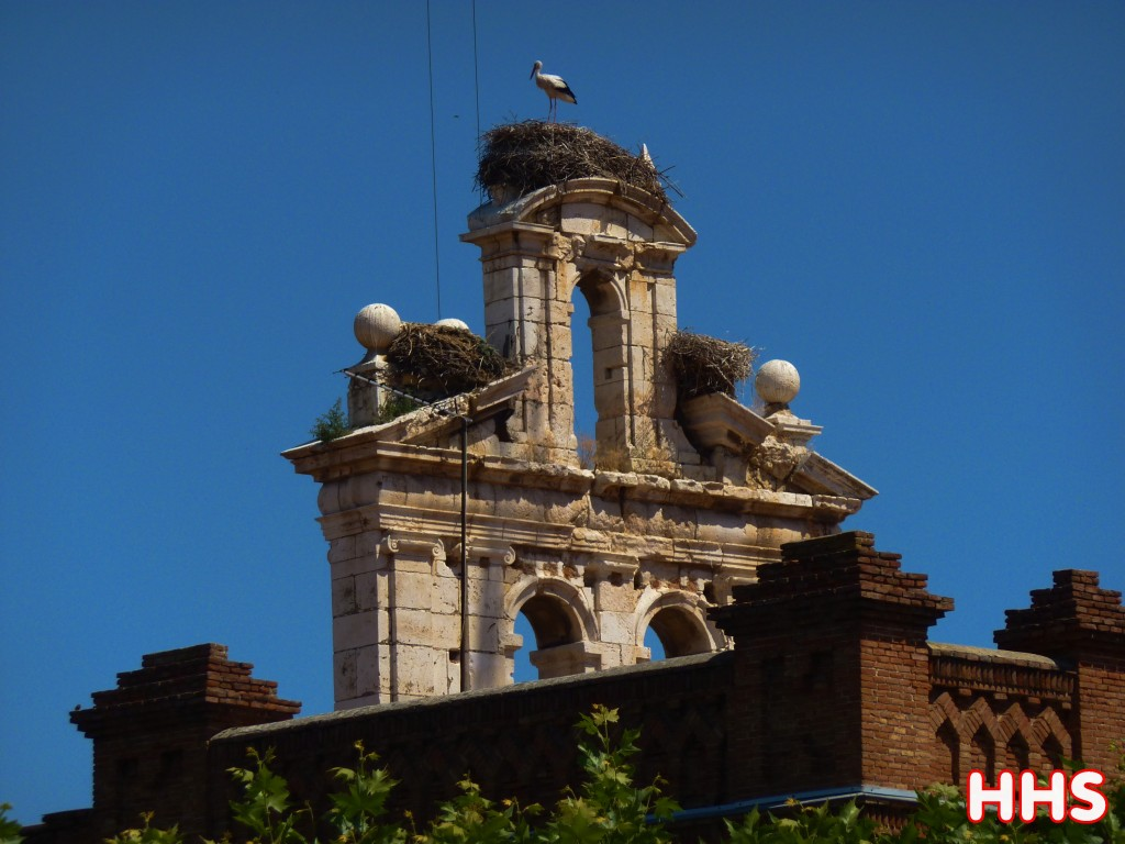 Alcala de henares stork nest for Toldos alcala de henares