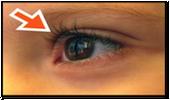 Spanish Eye Ojo